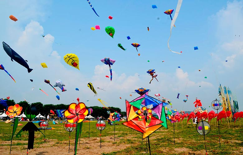 Colorful Kites