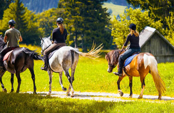 Horse Riding in Himachal