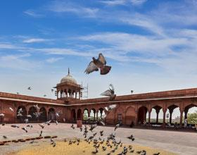 holiday packages to Jaipur, Udaipur