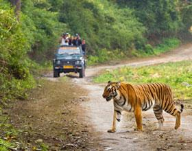Golden Triangle with Corbett Tour